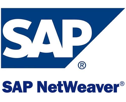 MOYCOM DE Strategic Alliances CSEEE - Microsoft & SAP Interoperability